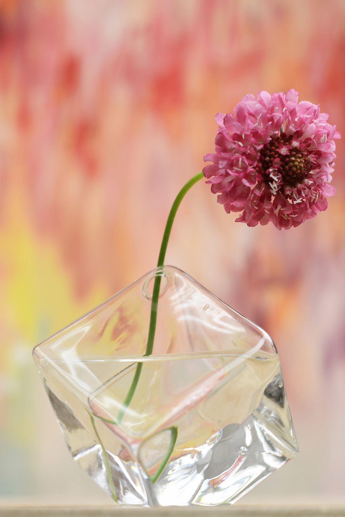 Glass Cube Bud Vase