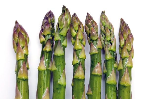 The Asparagus Pee Mystery: This veggie boasts high amounts of vitamins A and K and is low in calories, so it's a great grilled addition to any summertime picnic. But have you ever wondered why your urine smells unusual after you eat it? The smell is caused by asparagus' sulfurous amino acids, but not all of us get a whiff. Your genetics determine whether or not you have the ability to actually detect the odor.