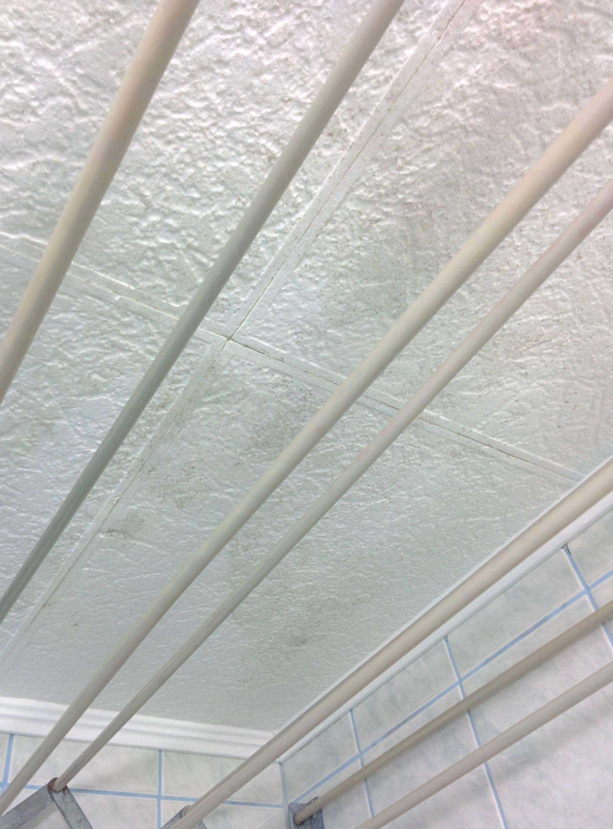 Can you fireproof polystyrene ceiling tiles theteenline fire ant polystyrene ceiling tiles http dailygadgetfo Gallery