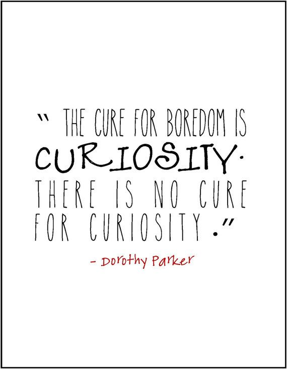 Dorothy Parker Curiosity Quote Typography By JenniferDareDesigns Enchanting Curiosity Quotes