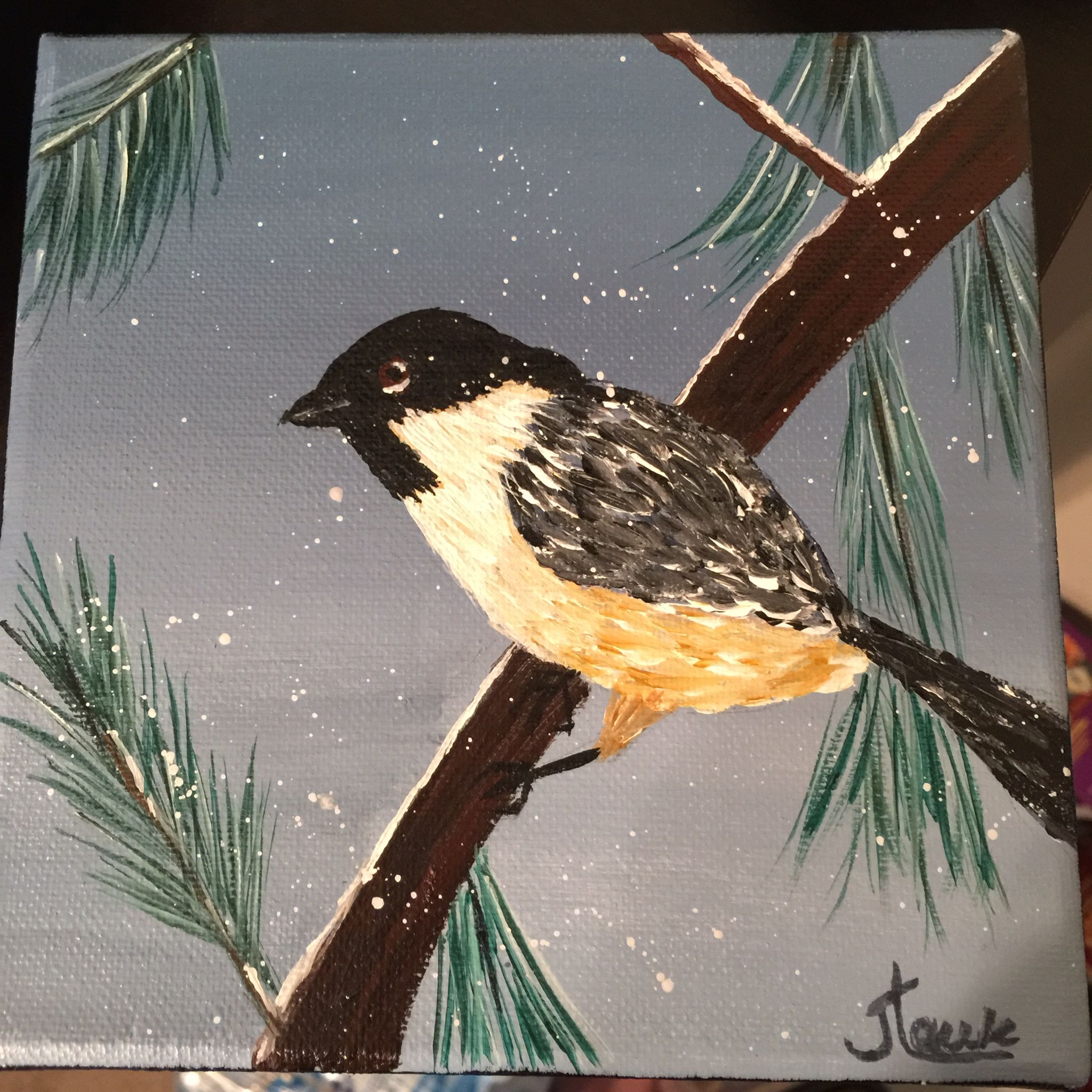 "Winter chickadee. 6x6"" stretched canvas $25 +s&h."