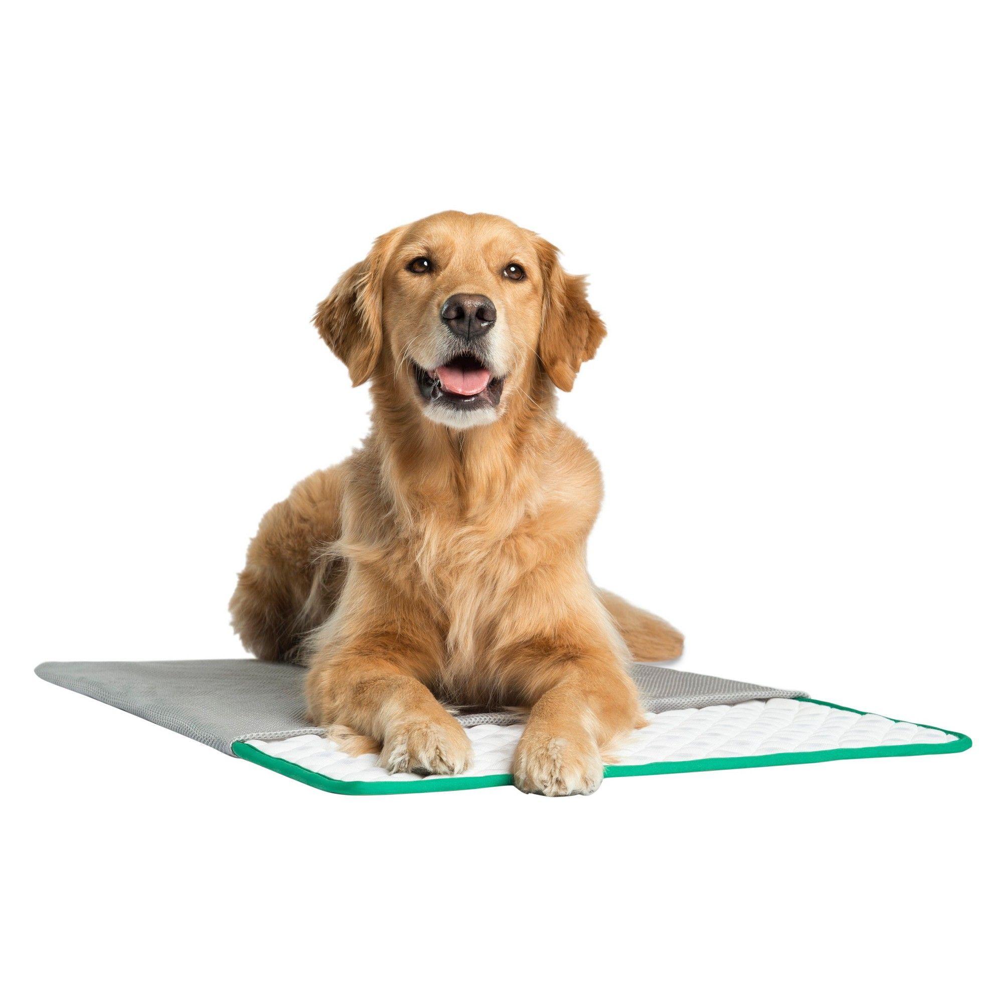 Pet Therapeutics MagnaPetic Powered Relief Pet