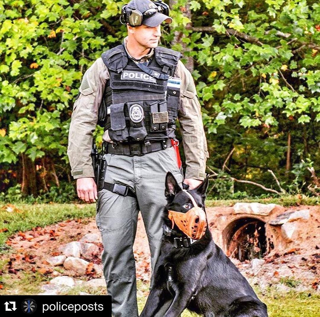 #Repost @policeposts with @repostapp. A City PD handler stands by with his patrol K9 Orrie during a training exercise ------------------------------------------ #brotherinblue #tbl #thinblueline #thinbluelinefamily #sheriff #sheriffdeputy #leo #lawenforcement #police #policeposts #cops #coplife #swat #swatlife #staytactical #policek9 #k9 by brass_flags