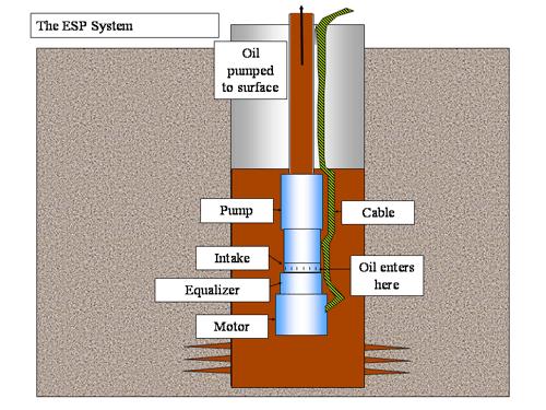 Electrical Submersible Pump (E.S.P) Submersible pump