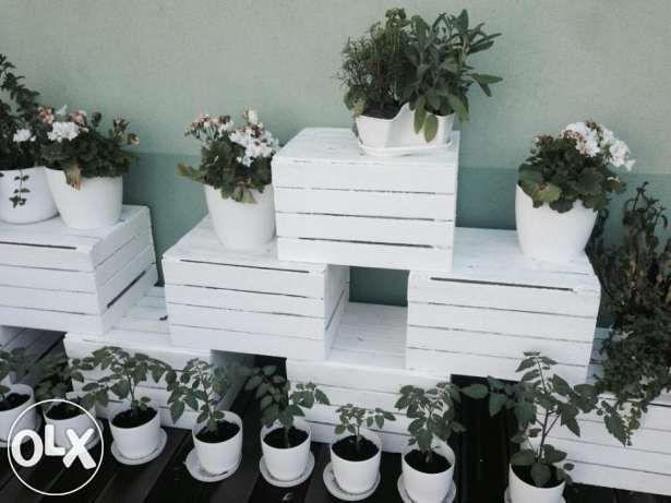 Skrzynki Drewniane Biale Postarzane Warszawa Warszawa Image 3 Garden Inspiration Planter Pots Inspiration
