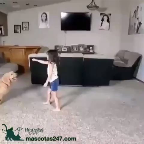 This girl playing with her dog is the best thing I've seen today