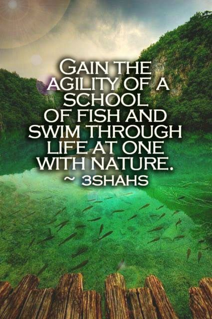 One with nature quote by 3shahs Nature quotes