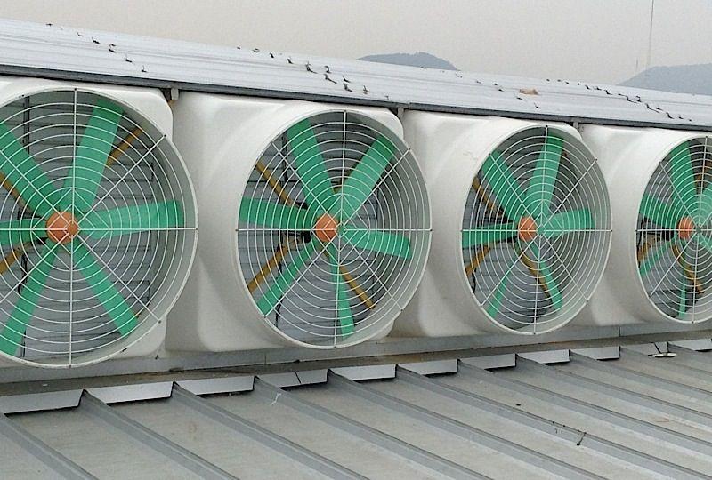 Roof Exhaust Fan Roof Ventilator Roof Ventilation Fan Industrial Roof Ventilation Fan Roof Ventilation Fan Ventilation Fan Exhaust Fan
