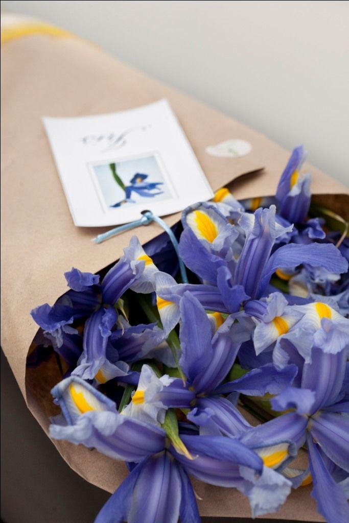 Lindo ramo de Iris, envuelto en papel craft y cinta organza.
