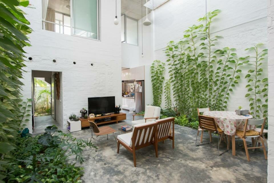 Indoor creepers at t house singapore by linghao for Indoor gardening singapore