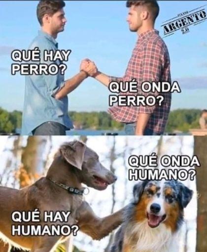 Pin De Valeria Cornejo En Memes Memes Divertidos Meme Gracioso Memes Graciosos