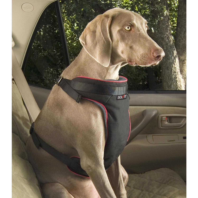 Solvit Vehicle Safety Harness Dog Safety Harness Dog Safety