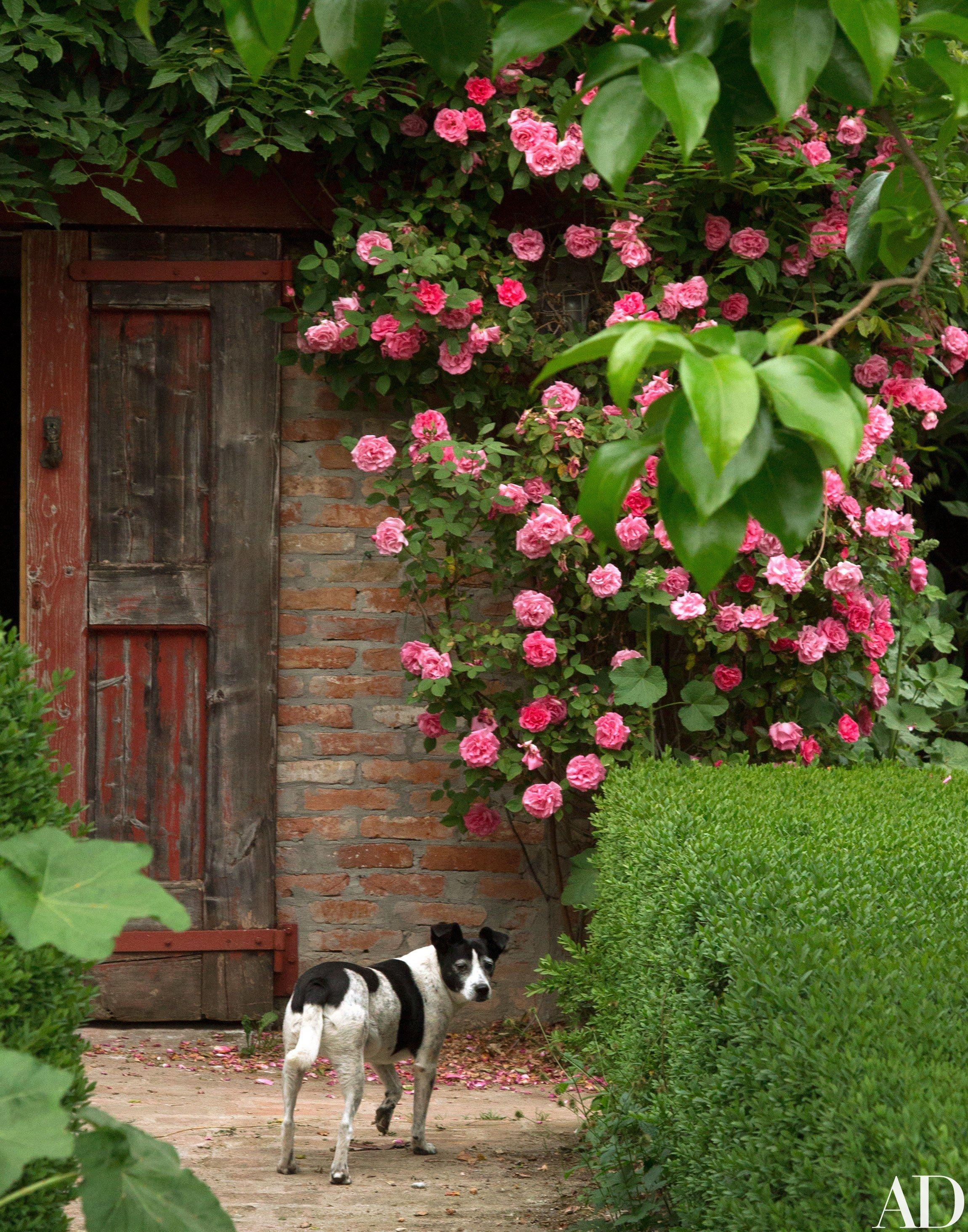 Photographer Oberto Gili\'s Dreamy Farmhouse in Northwest Italy ...