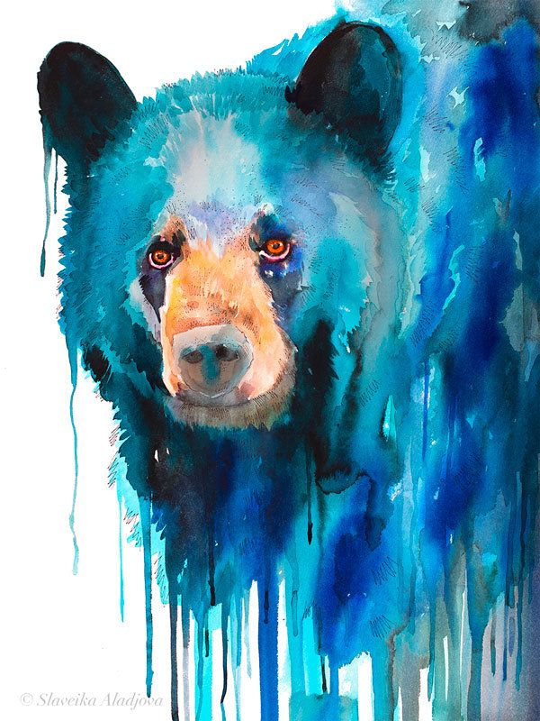 Blue American black bear watercolor painting print by Slaveika Aladjova #bears