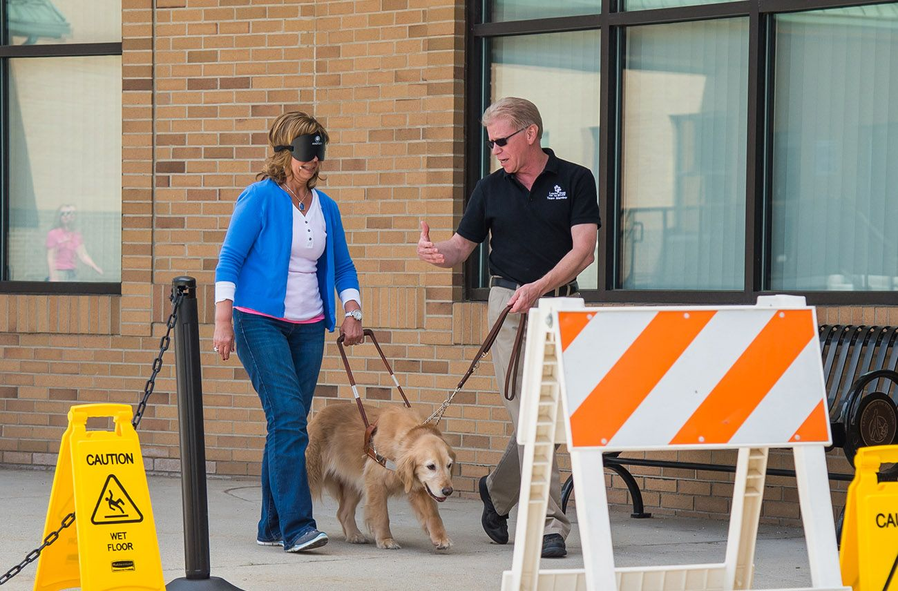 Blind people and their dogs showing executives the light