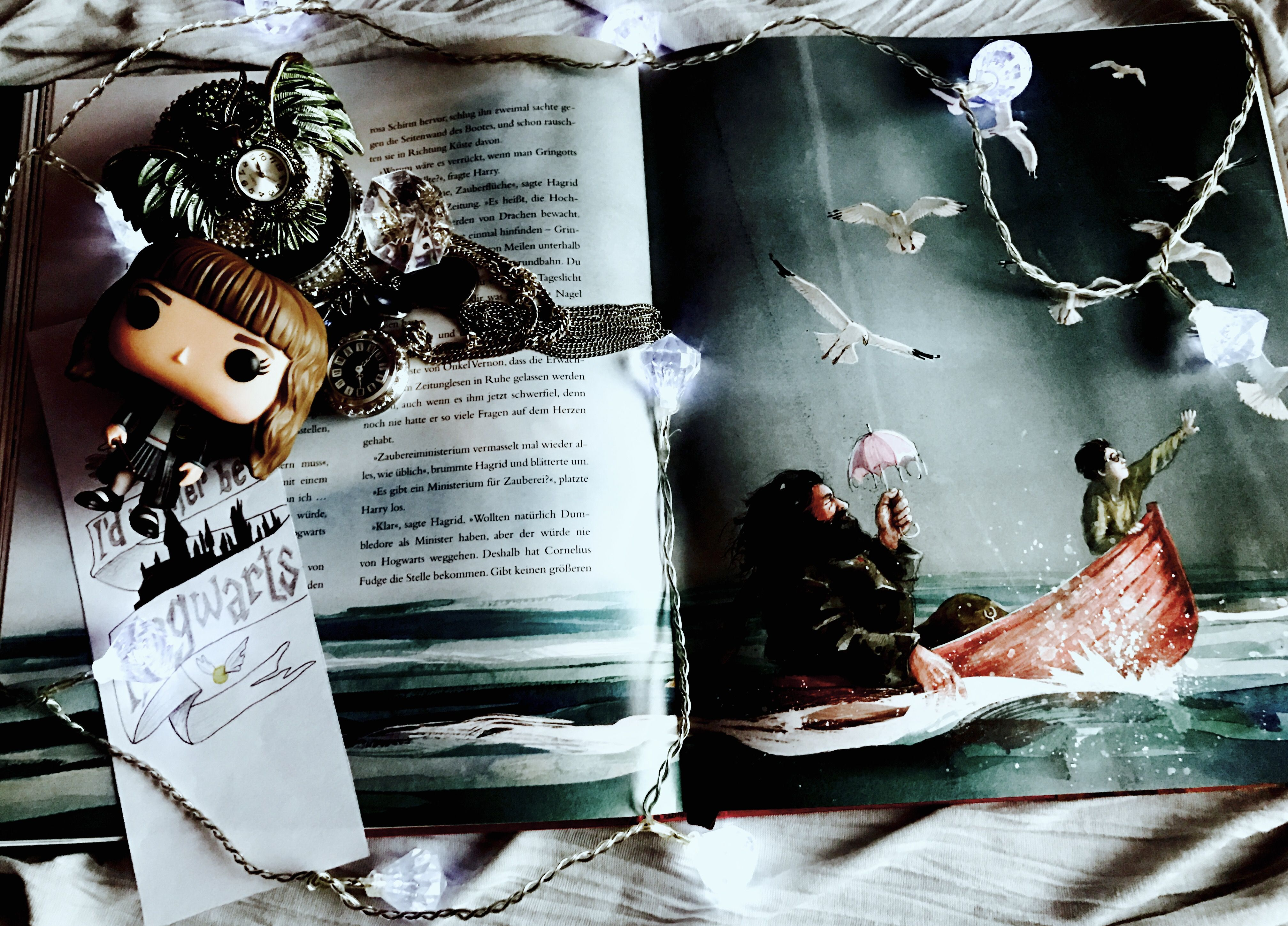 Harry Potter Und Der Stein Der Weisen Illustriert Von J K Rowling Stein Der Weisen Illustrierte Steine