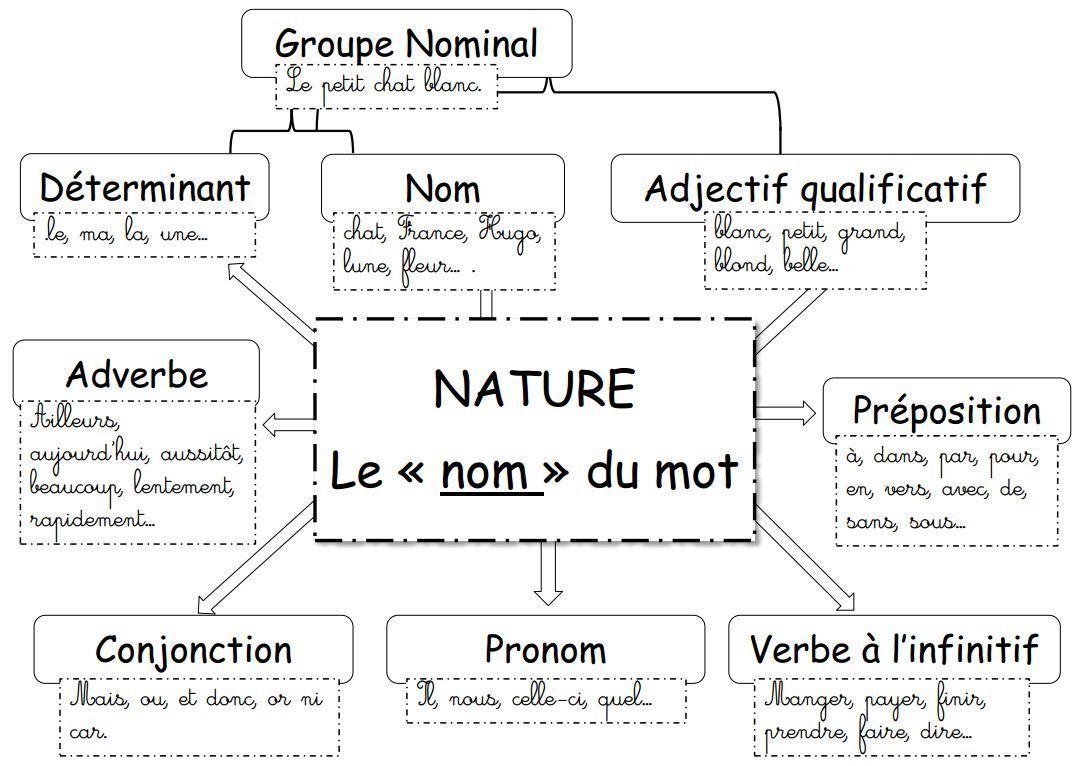 La nature des mots : le groupe nominal (exercices en ligne ...