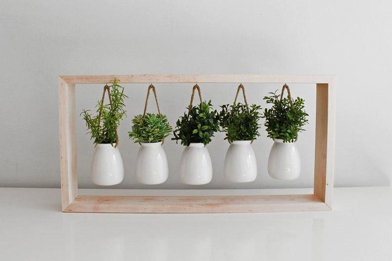 Indoor Succulent Garden in Wooden Frame | Wall Mount Planter | Air Plant Gift | Hanging Planter | Pot for Indoor Plants | Mother's Day Gift