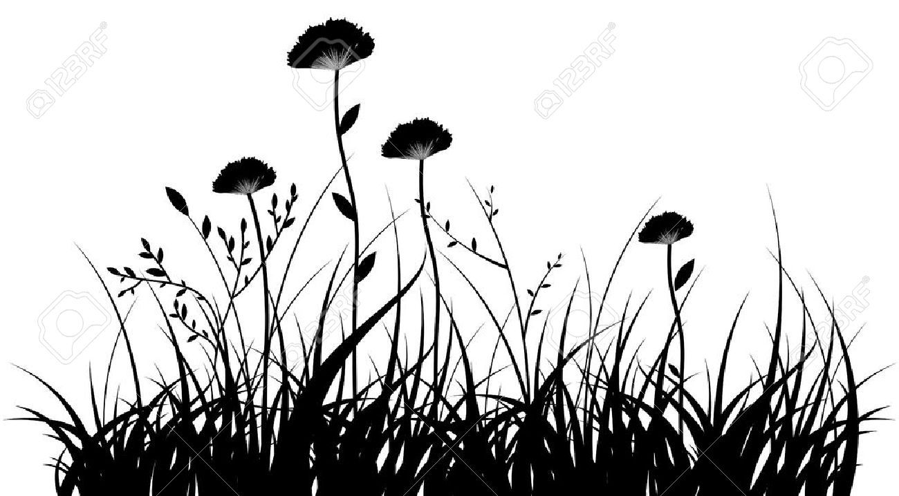Vector black silhouette of a grass and flowers on a