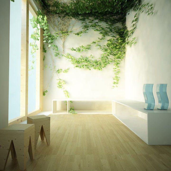beautiful | Plants | Pinterest