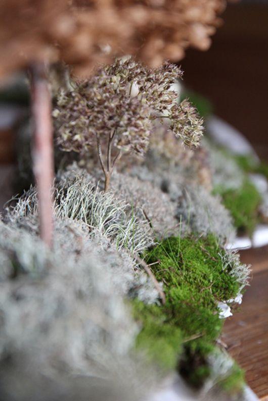 Maquette du jardin au 1 100e - détail de la végétalisation de la - chambre d agriculture du loir et cher