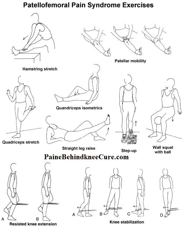 Knee Exercise Diagrams Trusted Wiring Diagram