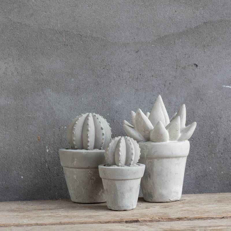 Cactus Beton Bol Groot Decoratie Ideeen Woonaccessoires Interieurstyling