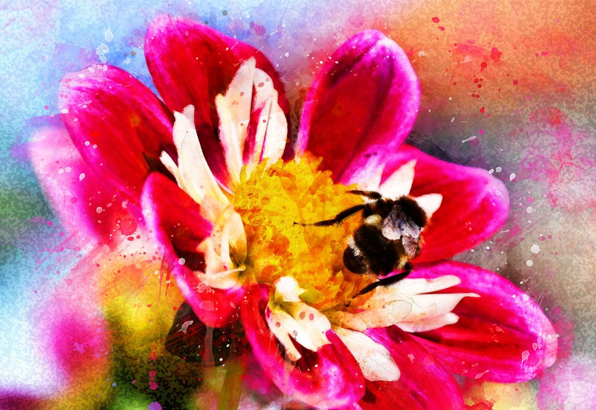 Pro Painting Photoshop Action Photoshop Painting Photoshop