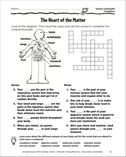The heart of the matter crossword puzzle page science and students will look at a diagram of the human body read clues and use the words from the diagram to complete a crossword puzzle malvernweather Images