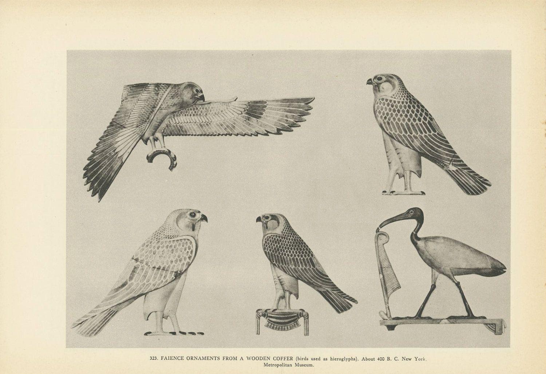 Egyptian Birds Used In Hieroglyphics, Falcon Crane, Art Of Ancient Egypt, Black White, Antique Print, Vienna Austria, 1936   Ancient egypt art, Hieroglyphics, Egyptian art