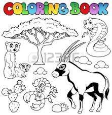 Resultado De Imagen De Dibujos Para Colorear El Desierto Paginas Para Colorear De Animales Libros Para Colorear Animales Salvajes