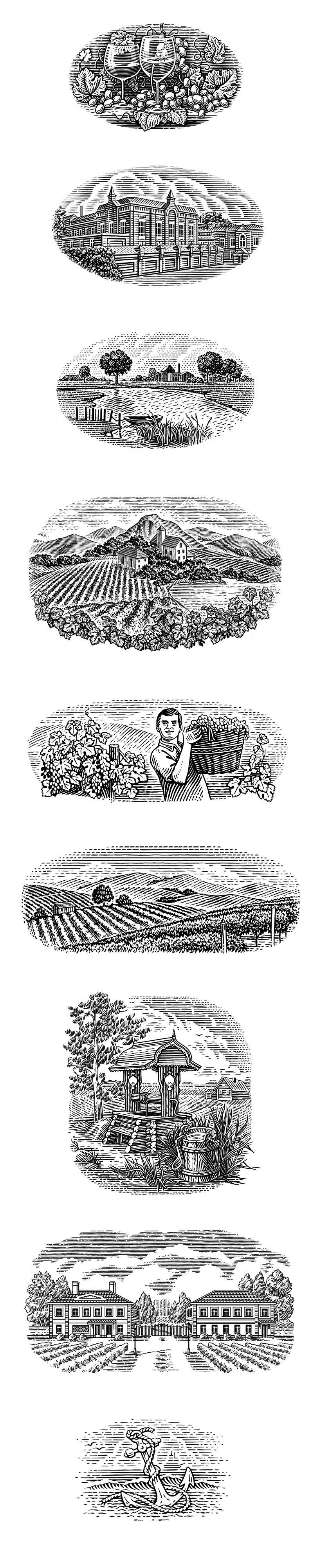 Иллюстрации для этикеток, Иллюстрация © Татьяна Трикоз в ...