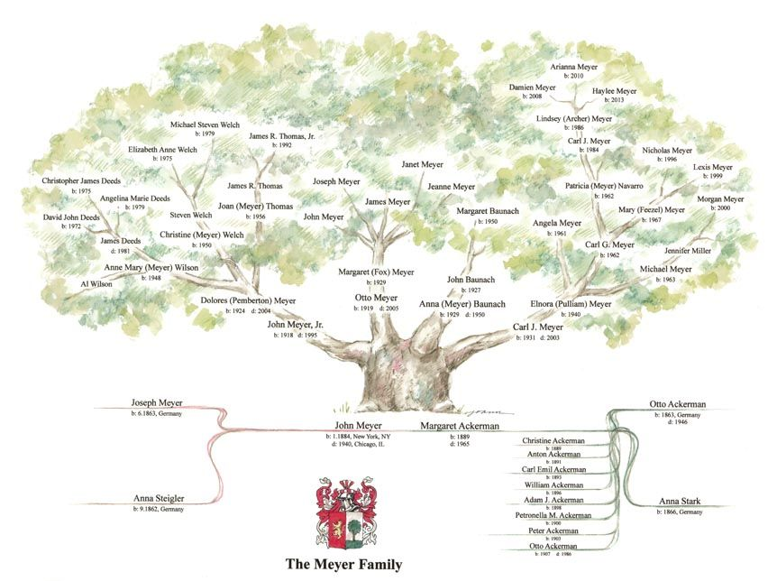 The Meyer Family All Family Trees Can Be Scanned To Produce