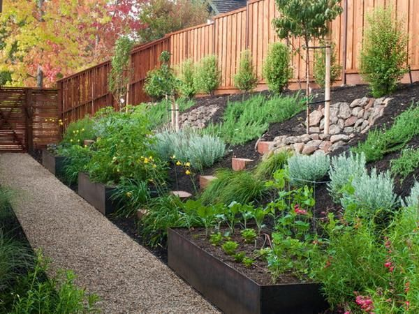 Landscaping ideas for backyard with a slope