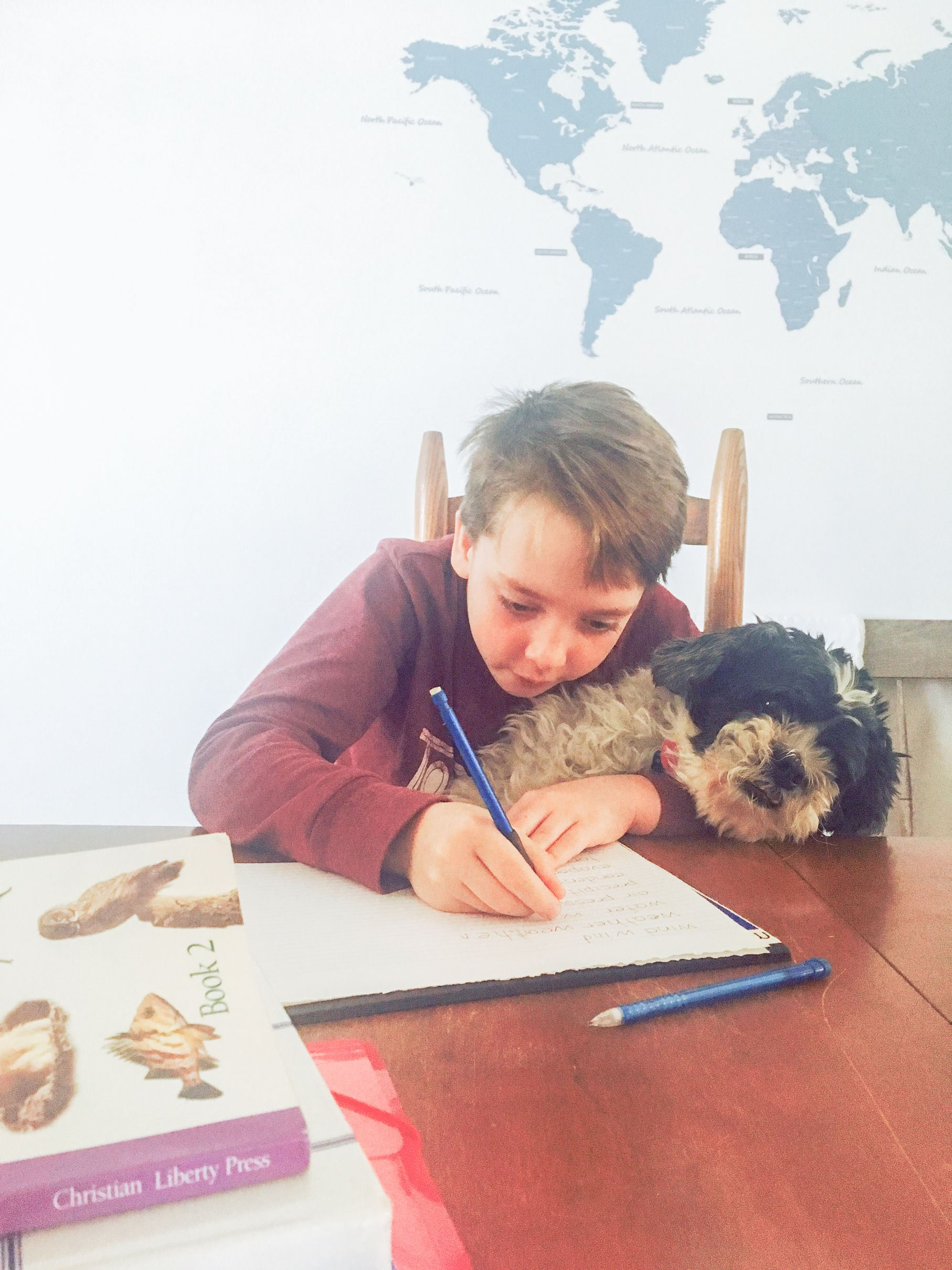 10 Things I Ve Learned After 17 Years Of Homeschooling