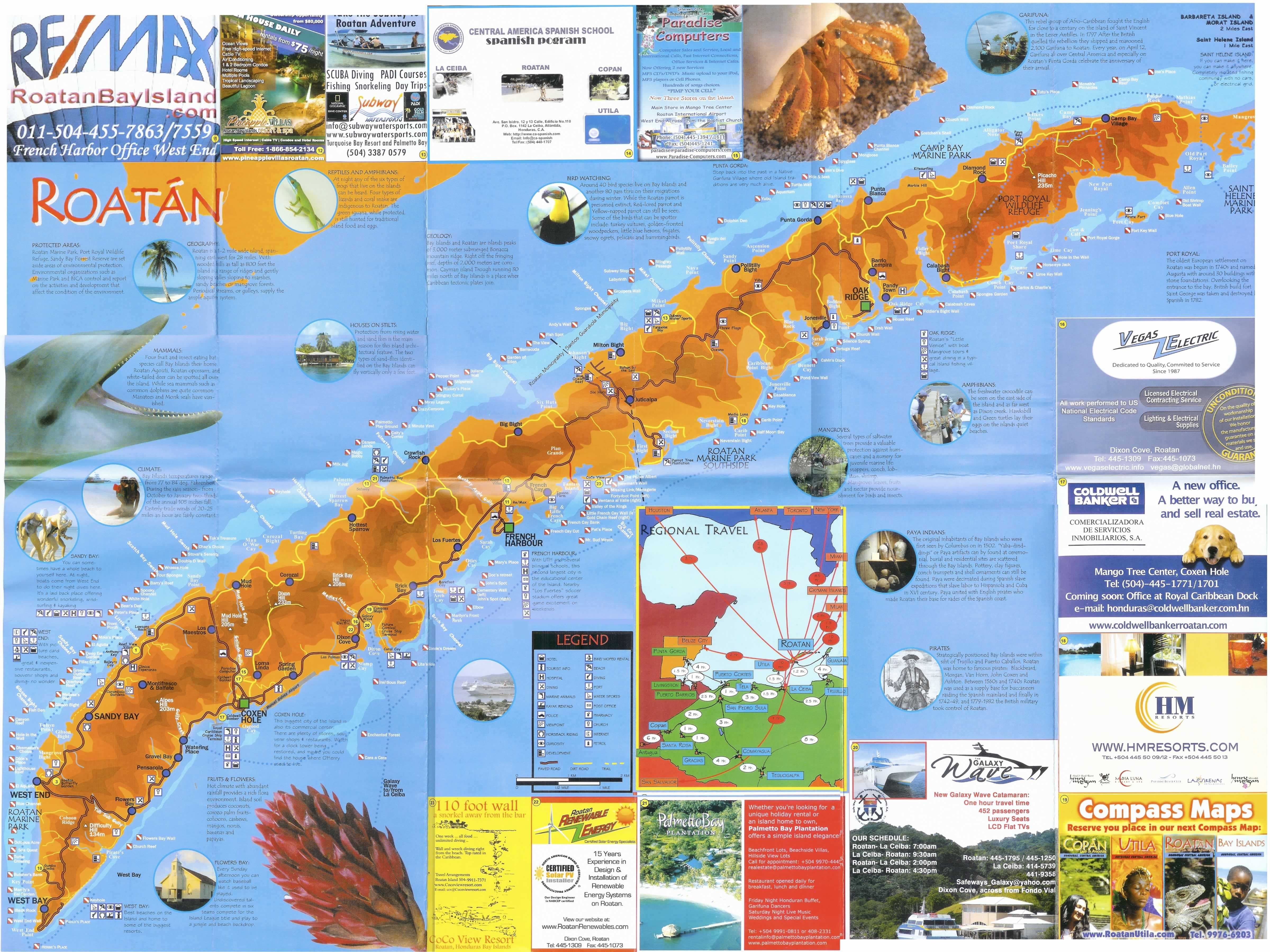 Roatan blue hole google search roatan hondorus - Roatan dive sites ...