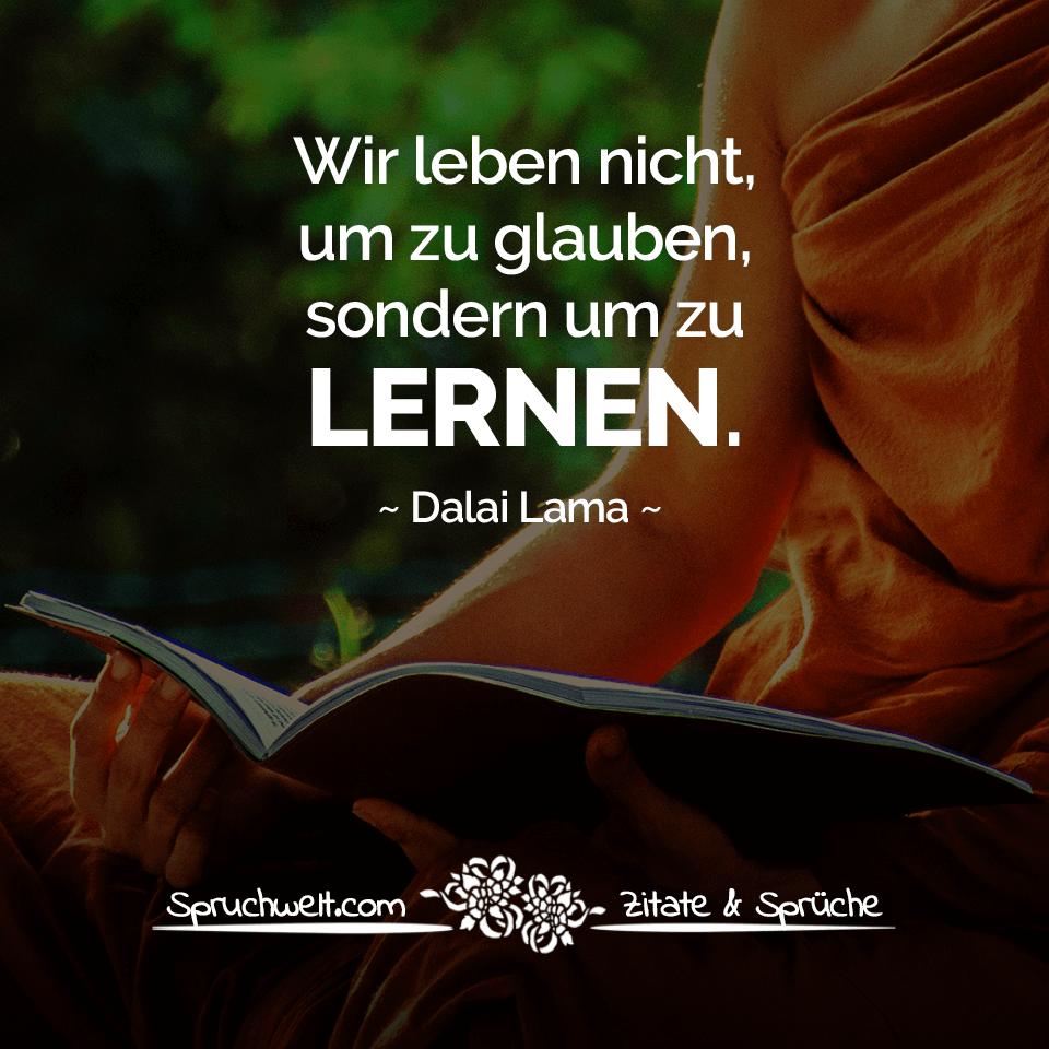 wir leben nicht um zu glauben sondern um zu lernen dalai lama zitat pinterest dalai lama. Black Bedroom Furniture Sets. Home Design Ideas