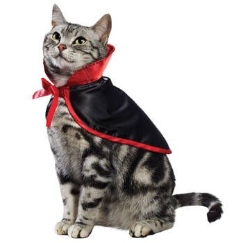 Dress Up Your Cat for Halloween With 7 Fun Feline Costumes V&ire Halloween Costume for Cats  sc 1 st  Pinterest & 15 Purrfect Halloween Costumes for Your Cat | Halloween costumes ...