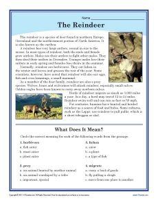 Fun Christmas Worksheet - Free Kindergarten Holiday Worksheet for Kids