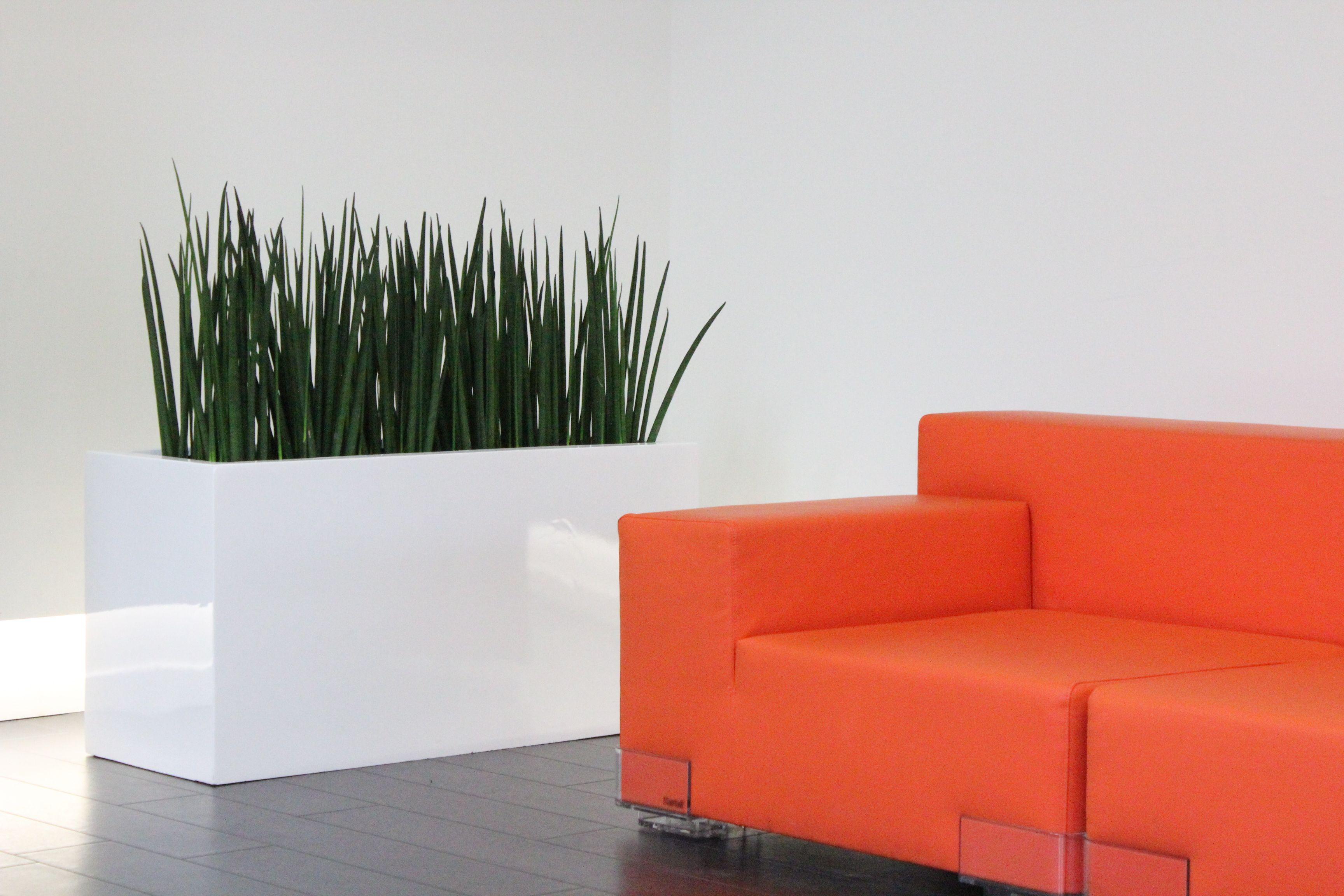 Maak van uw wachtuimte een aangename omgeving met