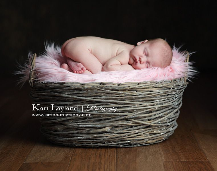 Basket fuzzy blanket perfection maybe have bum cheeks facing basket fuzzy blanket perfection maybe have bum cheeks facing other way though fuzzy blanketeaster basketsfuture negle Gallery