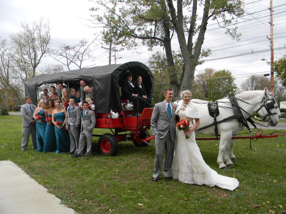 wedding covered wagons Cinderella's Dream Horse and