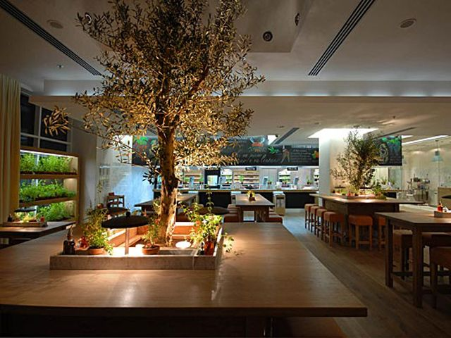 Luxury nature italian fine dining restauran interior