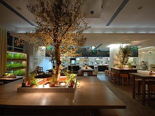 Luxury Nature Italian Fine Dining Restauran Interior