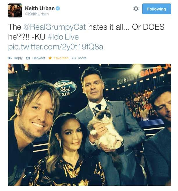 Who Took a Selfie With a Cat   Tweets You Missed |  #keithurban #americanidol #ryanseacrest