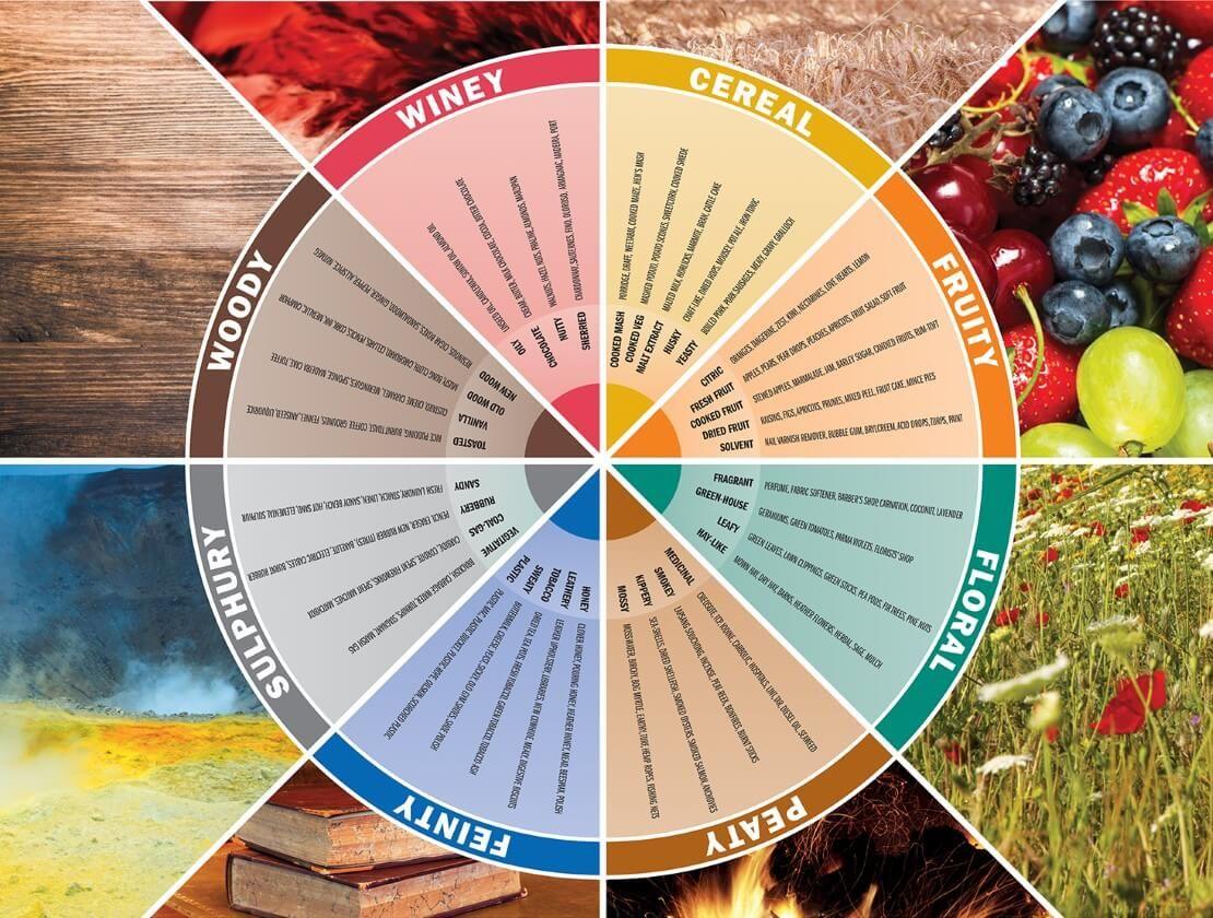 Tasting Wheel - Whisky Magazine | Whisky, Whisky tasting, Bourbon tasting