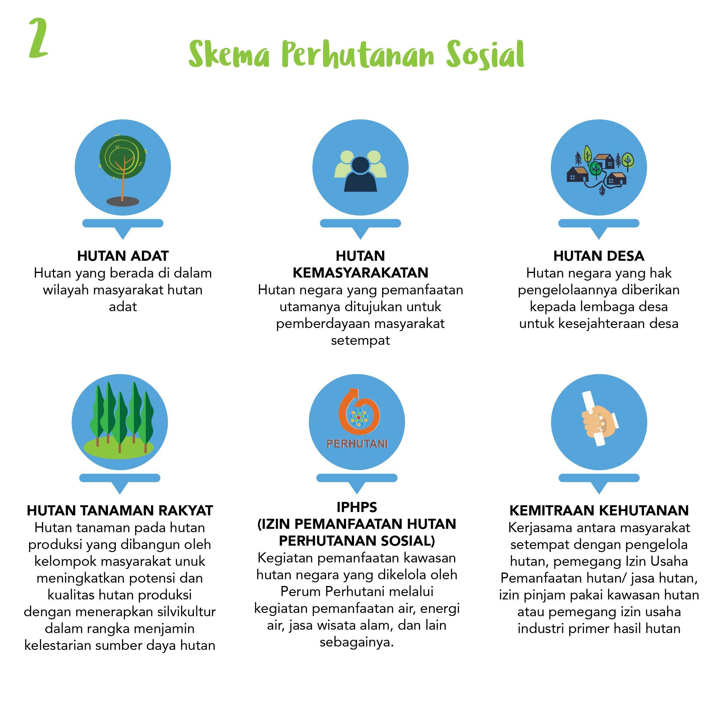 bentuk pengelolaan potensi hutan dalam skema perhutanan sosial ...