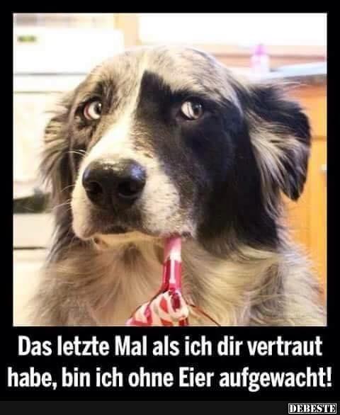 Das letzte mal als ich dir vertraut.. | DEBESTE.de ...