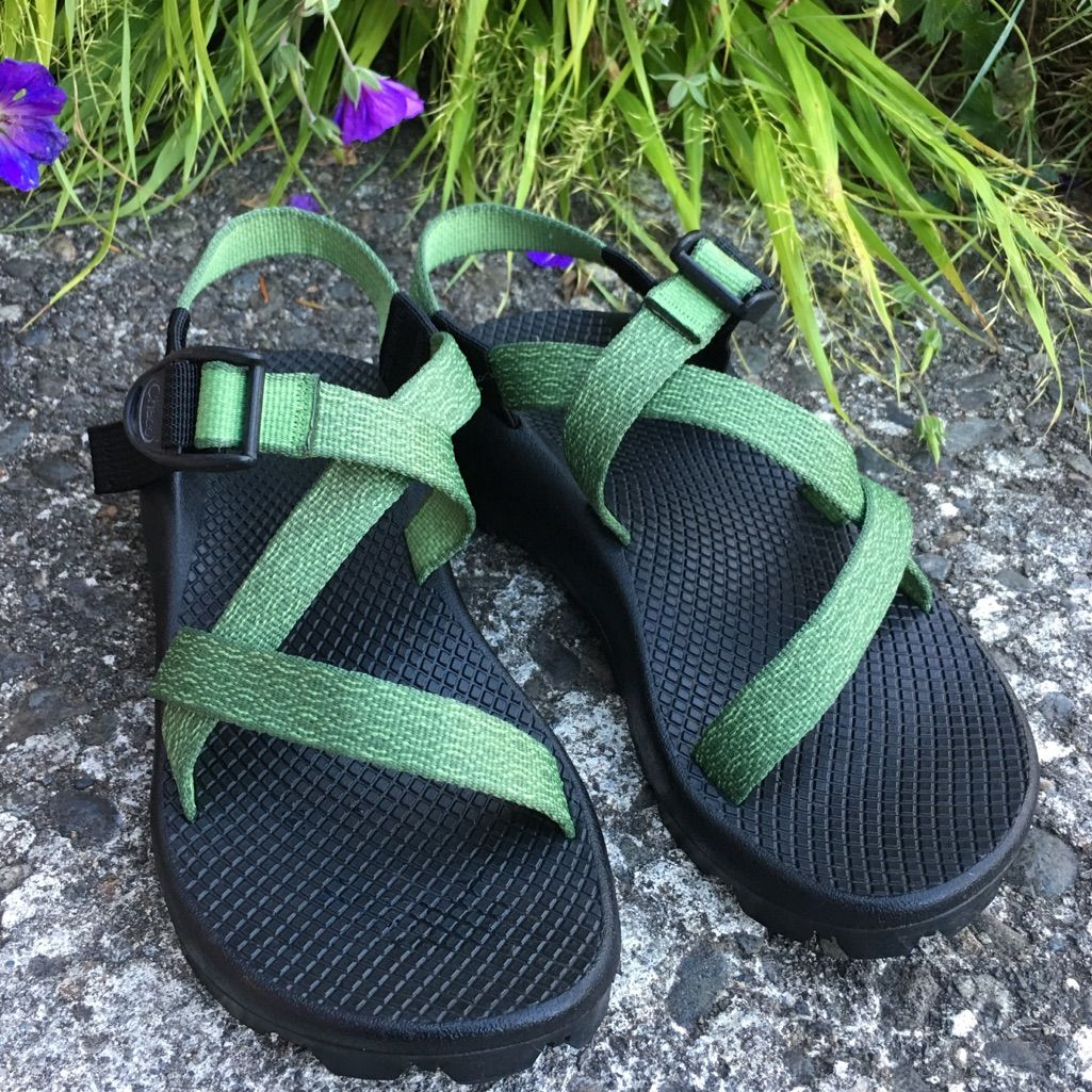 Chaco 1 strap no toe loop sandals green with images