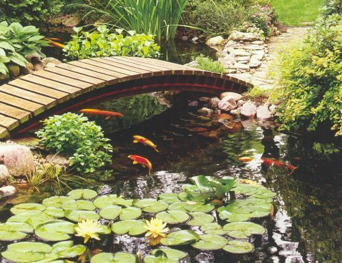 Decorative bridge around fish pond garden plants for Landscaping around koi pond